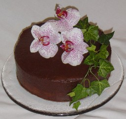Single Tier Chocolate Ganache Wedding with Orchid Topper