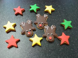 Stars and Reindeer Gingerbread Biscuits