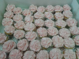Baby Pink Buttercream Cup Cakes