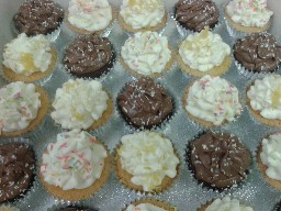 Assorted Chocolate and Plain Buttercreamed Cup Cakes